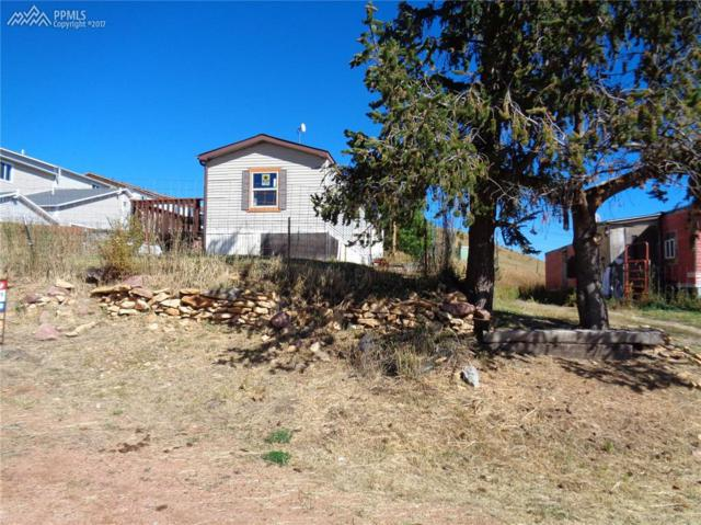 423 W Eaton Avenue, Cripple Creek, CO 80813 (#6147332) :: 8z Real Estate
