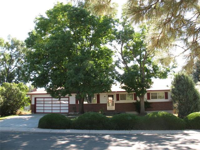 4730 Shadowglen Drive, Colorado Springs, CO 80918 (#6148930) :: 8z Real Estate