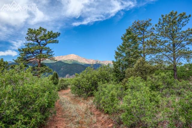 3770 Outback Vista Point, Colorado Springs, CO 80904 (#6149238) :: Action Team Realty