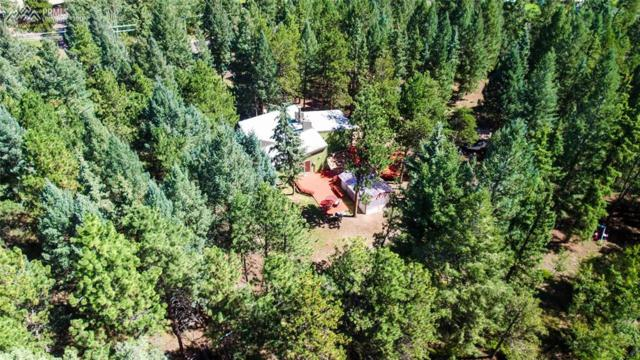123 W Saddle Drive, Woodland Park, CO 80863 (#6151183) :: 8z Real Estate