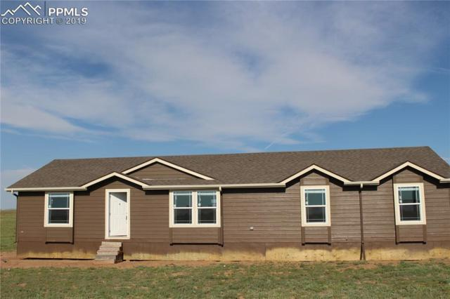 3560 Johnson Road, Rush, CO 80833 (#6153275) :: CC Signature Group