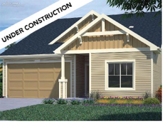 7901 Whistlestop Lane, Fountain, CO 80817 (#6153307) :: 8z Real Estate