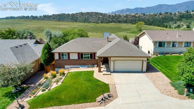1565 Bear Cloud Drive, Colorado Springs, CO 80919 (#6156752) :: Tommy Daly Home Team