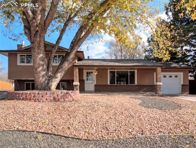 1154 Turley Circle, Colorado Springs, CO 80915 (#6156788) :: The Hunstiger Team