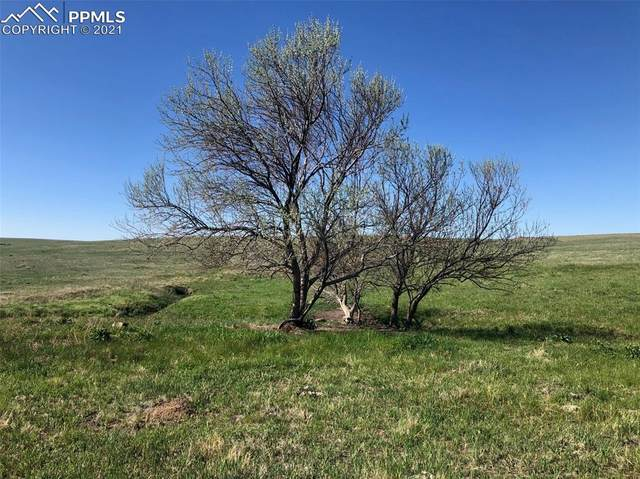 03 Mikita Road, Calhan, CO 80831 (#6162301) :: Action Team Realty
