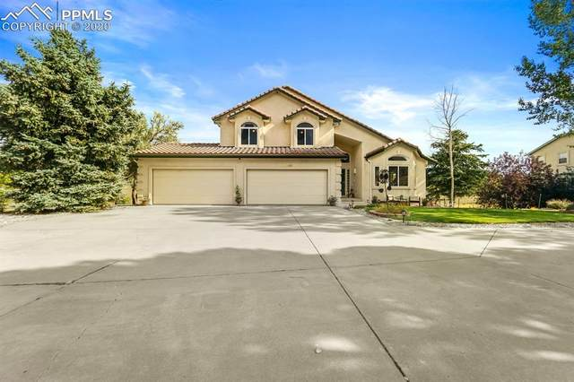 15095 Copperfield Drive, Colorado Springs, CO 80921 (#6163938) :: Tommy Daly Home Team