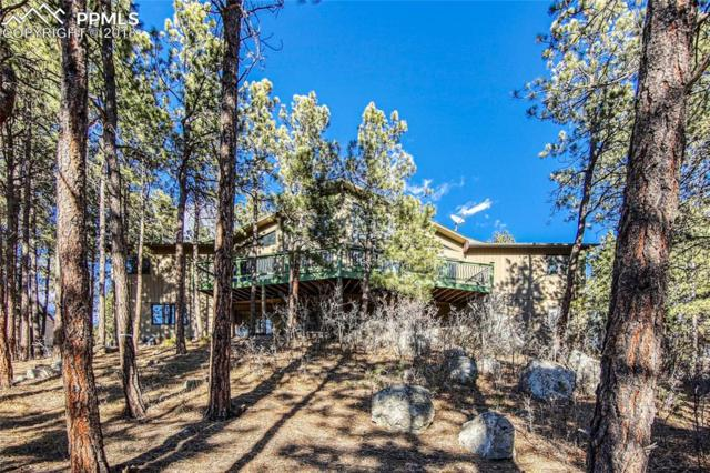 17360 Caribou Drive, Monument, CO 80132 (#6166797) :: Jason Daniels & Associates at RE/MAX Millennium