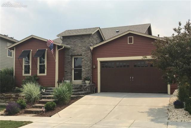 8328 James Creek Drive, Colorado Springs, CO 80924 (#6168534) :: Jason Daniels & Associates at RE/MAX Millennium