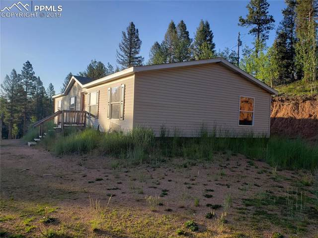 1530 Coyote Trail, Woodland Park, CO 80863 (#6171348) :: Tommy Daly Home Team