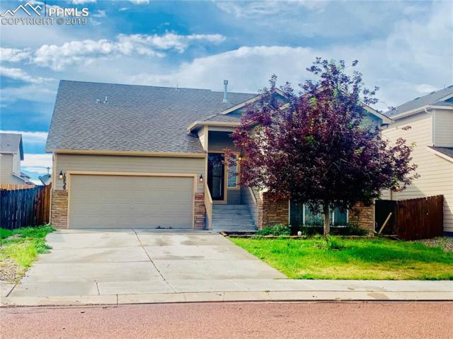 10829 Deer Meadow Circle, Colorado Springs, CO 80925 (#6175545) :: CC Signature Group