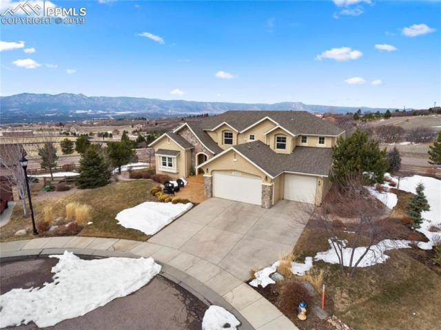 13992 Windy Oaks Road, Colorado Springs, CO 80921 (#6176120) :: Venterra Real Estate LLC