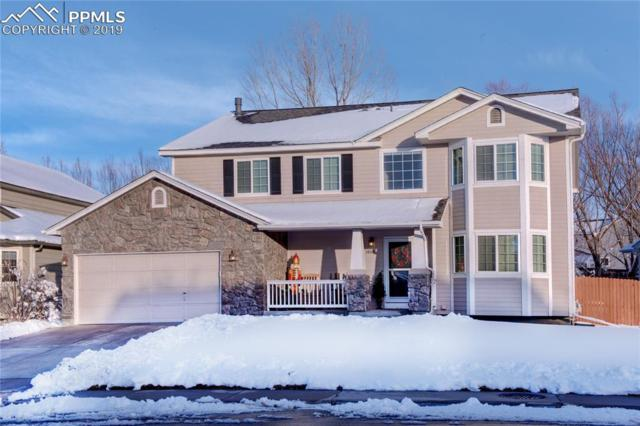 3866 Storm Cloud Way, Castle Rock, CO 80104 (#6177955) :: Perfect Properties powered by HomeTrackR