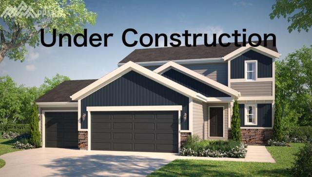 6015 Jorie Road, Colorado Springs, CO 80927 (#6179945) :: 8z Real Estate