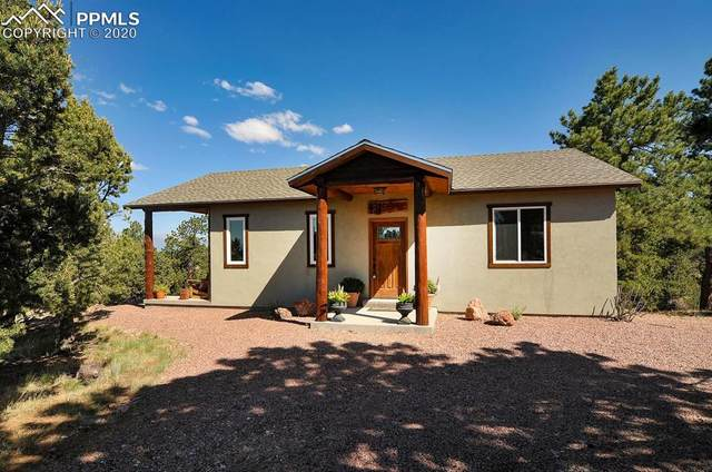 431 Cherokee Trail, Westcliffe, CO 81252 (#6181235) :: Tommy Daly Home Team