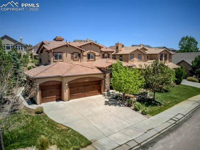 13861 Single Leaf Court, Colorado Springs, CO 80921 (#6183680) :: 8z Real Estate
