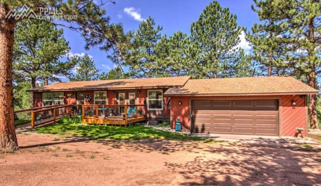 171 Druid Trail, Florissant, CO 80816 (#6191488) :: 8z Real Estate