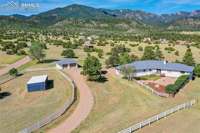 395 County Road 291, Wetmore, CO 81253 (#6192469) :: Tommy Daly Home Team