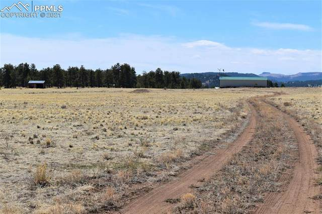 1525 Doe Valley Road, Guffey, CO 80820 (#6194263) :: Fisk Team, RE/MAX Properties, Inc.