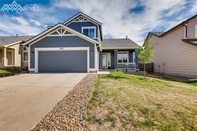 5272 Statute Drive, Colorado Springs, CO 80922 (#6196275) :: The Peak Properties Group