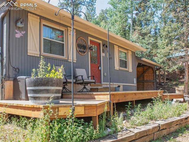 1225 Ridge Road, Divide, CO 80814 (#6196800) :: The Gold Medal Team with RE/MAX Properties, Inc
