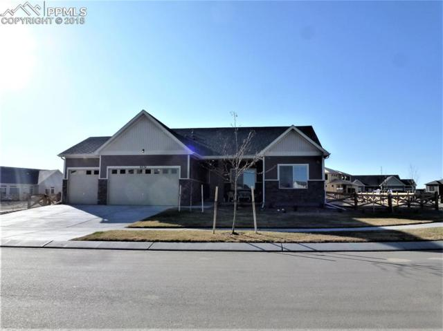 8834 Tranquil Knoll Lane, Colorado Springs, CO 80927 (#6198295) :: CC Signature Group