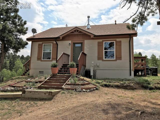 294 Maid Marian Drive, Divide, CO 80814 (#6199512) :: Harling Real Estate