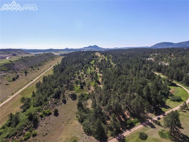 1000 Comanche Ridge Drive, Larkspur, CO 80118 (#6199516) :: Jason Daniels & Associates at RE/MAX Millennium