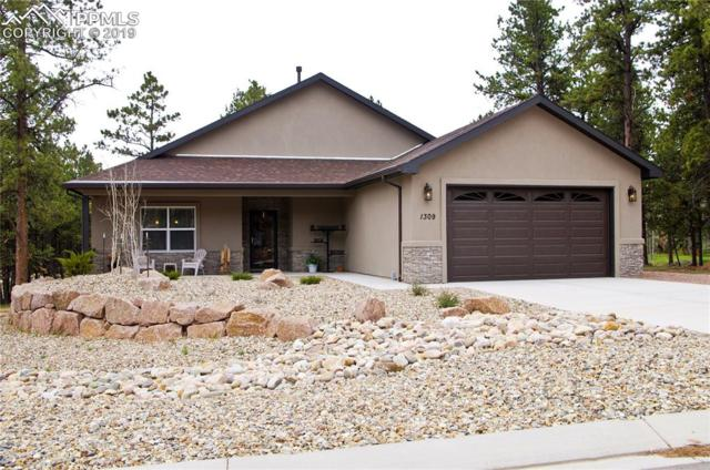 1309 Firestone Drive, Woodland Park, CO 80863 (#6200324) :: Colorado Home Finder Realty