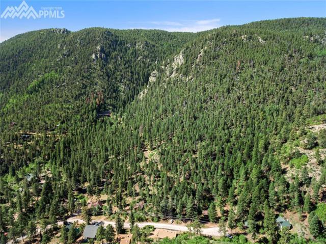 Belvedere Avenue, Green Mountain Falls, CO 80863 (#6202698) :: The Daniels Team