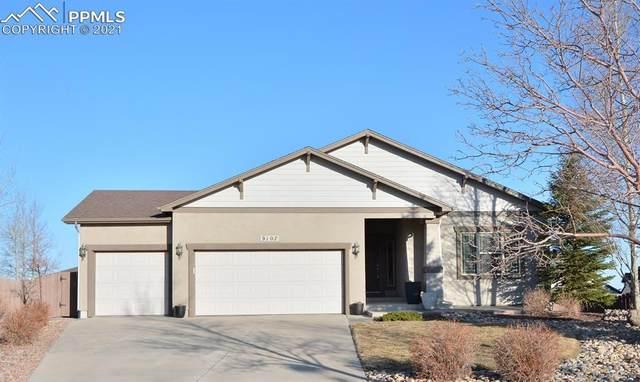 9107 Rock Pond Way, Colorado Springs, CO 80924 (#6203655) :: Finch & Gable Real Estate Co.