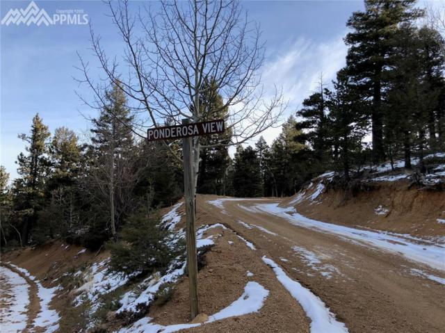 233 Ponderosa View, Manitou Springs, CO 80829 (#6203981) :: Action Team Realty