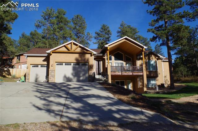 4519 Edwards Place, Cascade, CO 80809 (#6211540) :: The Peak Properties Group