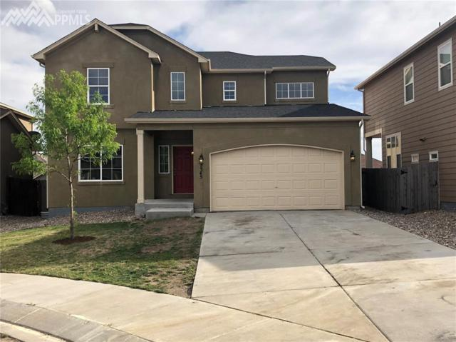 7345 Big Prairie Court, Colorado Springs, CO 80915 (#6212709) :: Colorado Home Finder Realty