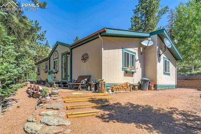 999 Plateau Drive, Florissant, CO 80816 (#6213422) :: Compass Colorado Realty