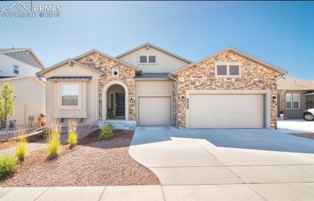 8439 Crooked Branch Lane, Colorado Springs, CO 80927 (#6213436) :: Fisk Team, RE/MAX Properties, Inc.