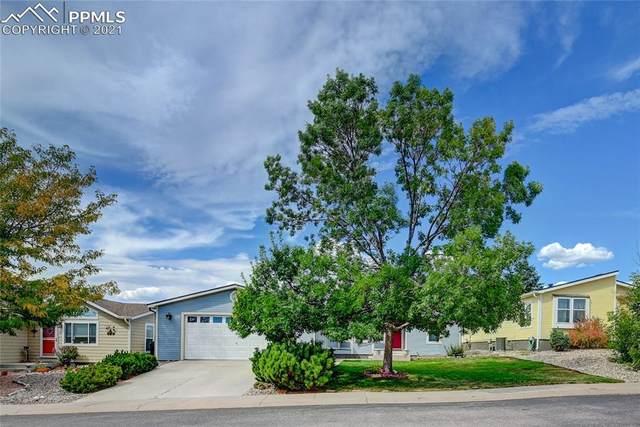 4012 Gray Fox Heights, Colorado Springs, CO 80922 (#6216589) :: CC Signature Group