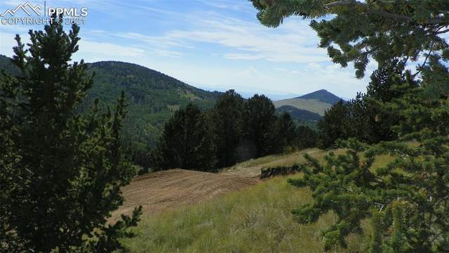 Rhyolite, Cripple Creek, CO 80813 (#6217681) :: The Dixon Group