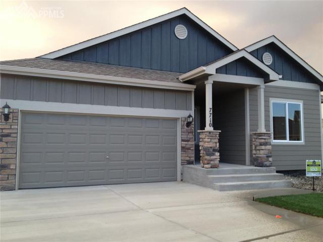 7710 Whipple Court, Fountain, CO 80817 (#6220332) :: Fisk Team, RE/MAX Properties, Inc.