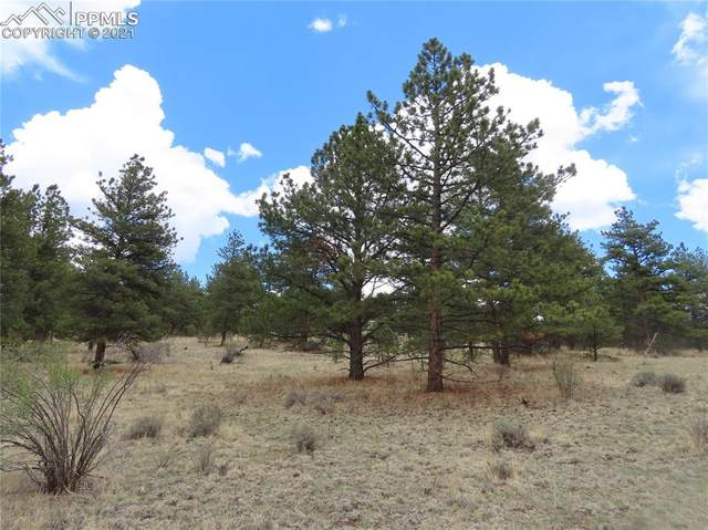 192 Cheyenne Way, Divide, CO 80814 (#6221563) :: The Kibler Group