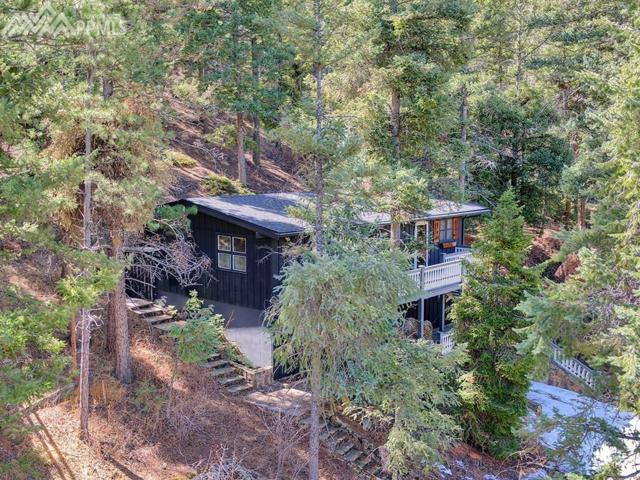 9455 Shoshone Road, Cascade, CO 80809 (#6222568) :: Action Team Realty
