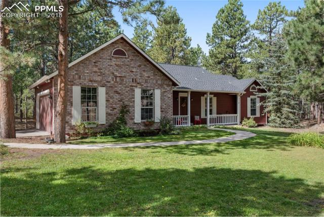 18160 Six Trees Lane, Monument, CO 80132 (#6222795) :: Action Team Realty