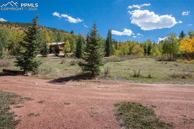 12658 S Highway 67 Highway, Cripple Creek, CO 80813 (#6224951) :: The Daniels Team