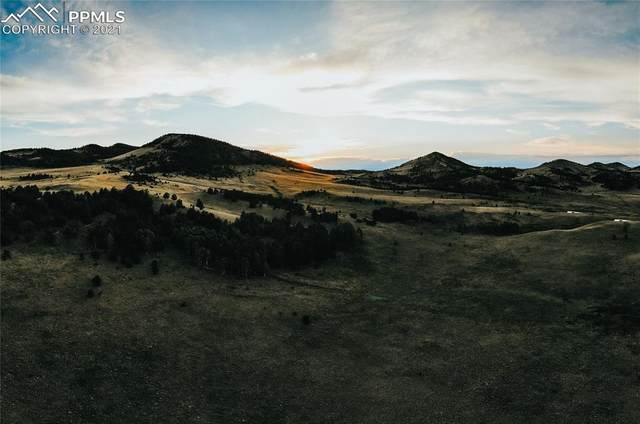 County Road 108, Guffey, CO 80820 (#6225152) :: Action Team Realty