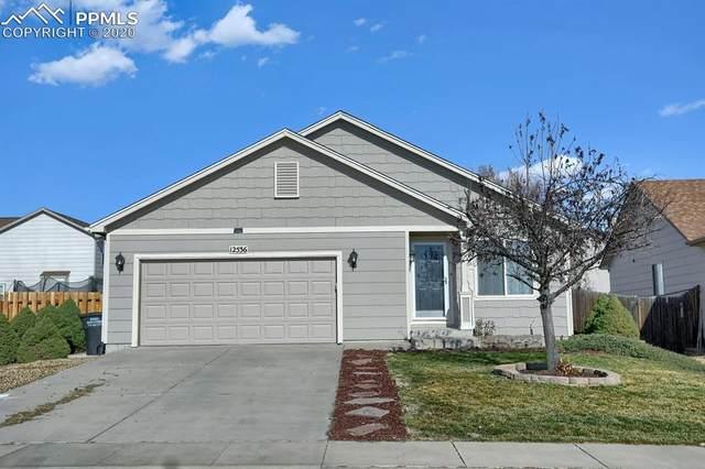 12536 Scamper Road, Peyton, CO 80831 (#6235480) :: 8z Real Estate