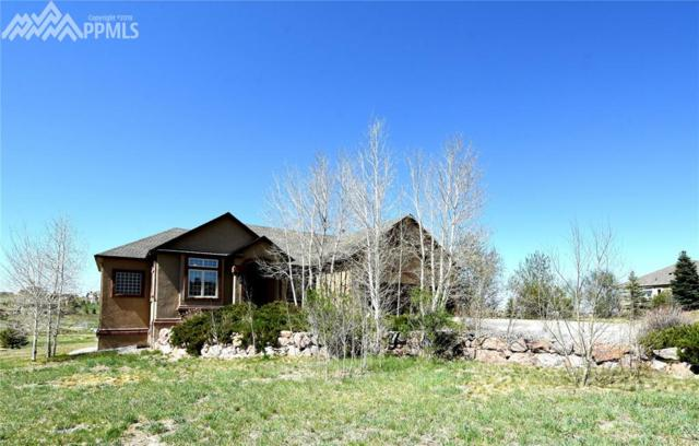 1236 Castlecombe Lane, Monument, CO 80132 (#6237044) :: 8z Real Estate