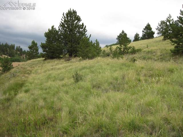 924 Anges Drive, Cripple Creek, CO 80813 (#6238685) :: The Treasure Davis Team