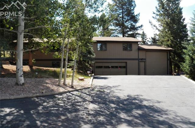 1111 Pine Ridge Road, Woodland Park, CO 80863 (#6240041) :: 8z Real Estate