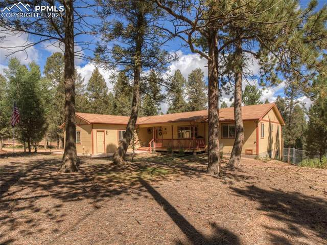 833 Spring Valley Drive, Divide, CO 80814 (#6240806) :: Symbio Denver