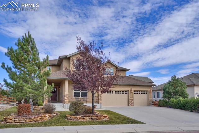 16665 Curled Oak Drive, Monument, CO 80132 (#6242740) :: Action Team Realty