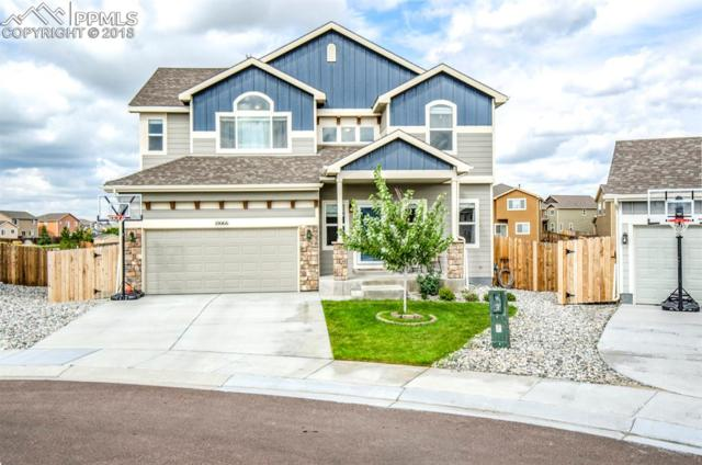 10066 Intrepid Way, Colorado Springs, CO 80925 (#6246472) :: The Kibler Group